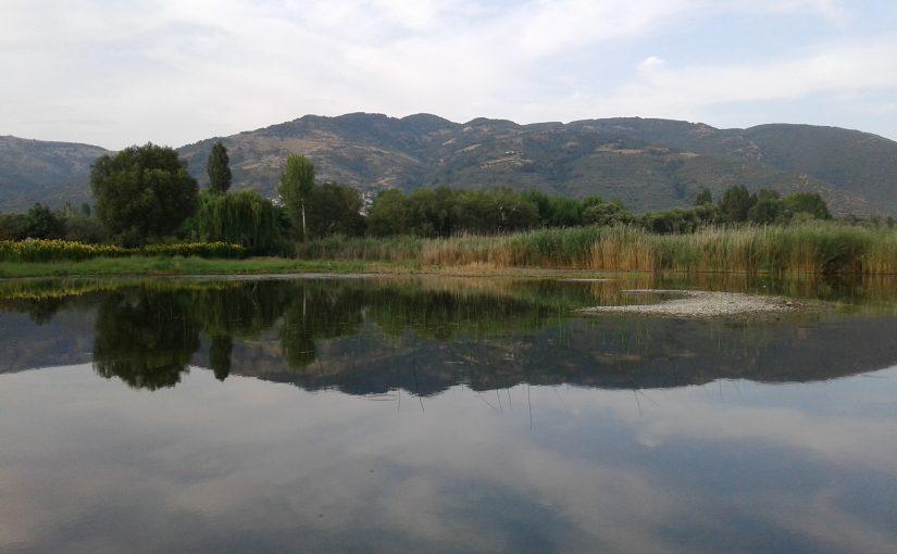 Ζαρίτς, Τζ. Χακί – μηδέν και νερό